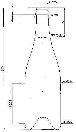 Бутылка вина: основные параметры посуды, типы винных бутылок