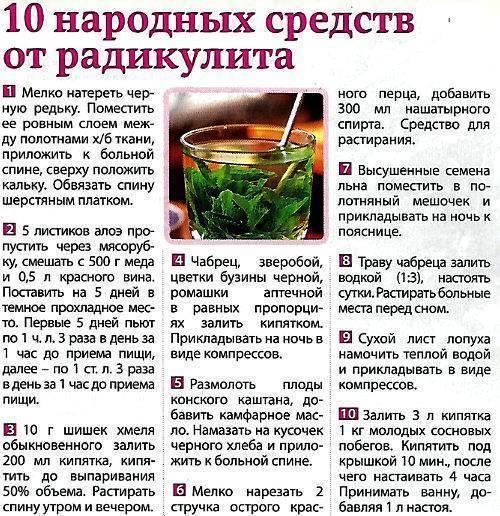 Настойки и наливки на водке и спирту рецепты с фото