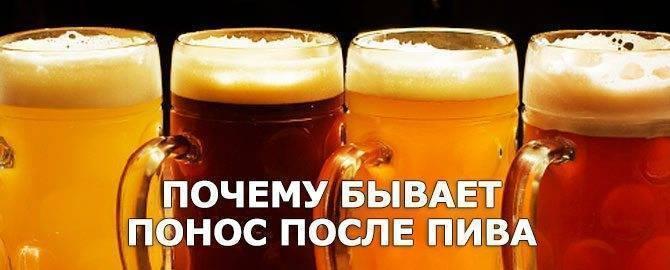 Почему после пива понос на утро