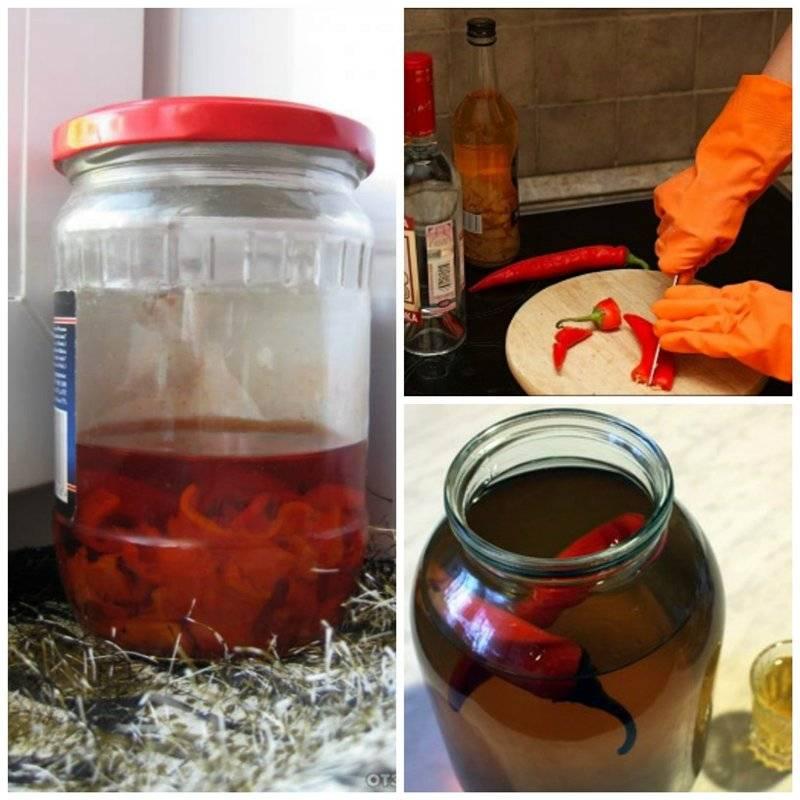 Рецепты перцовки из самогона в домашних условиях. технология, видео-рецепты