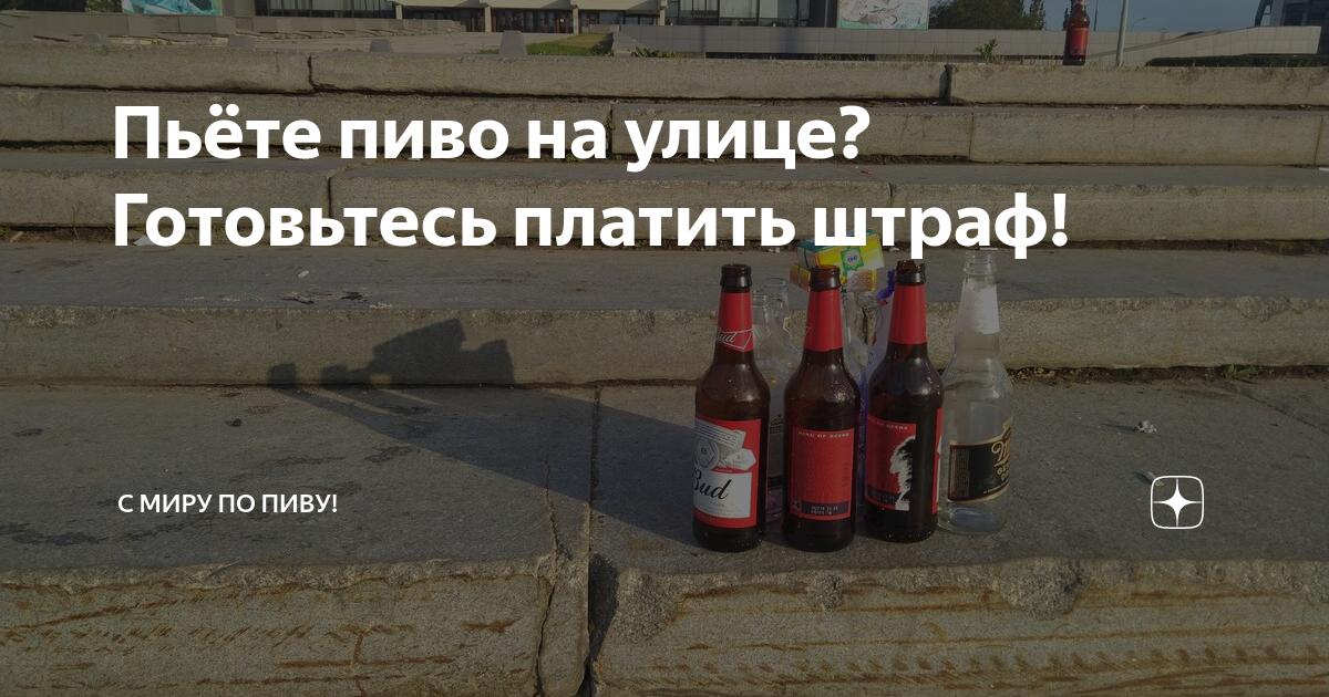 В пакете и без - нормы и штрафы в 2020 году, можно ли пить пиво в общественных местах: на улице, парках - юридическая помощь