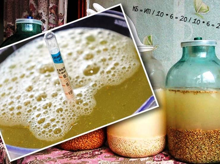 Как приготовить брагу для самогона из квасного сусла в домашних условиях
