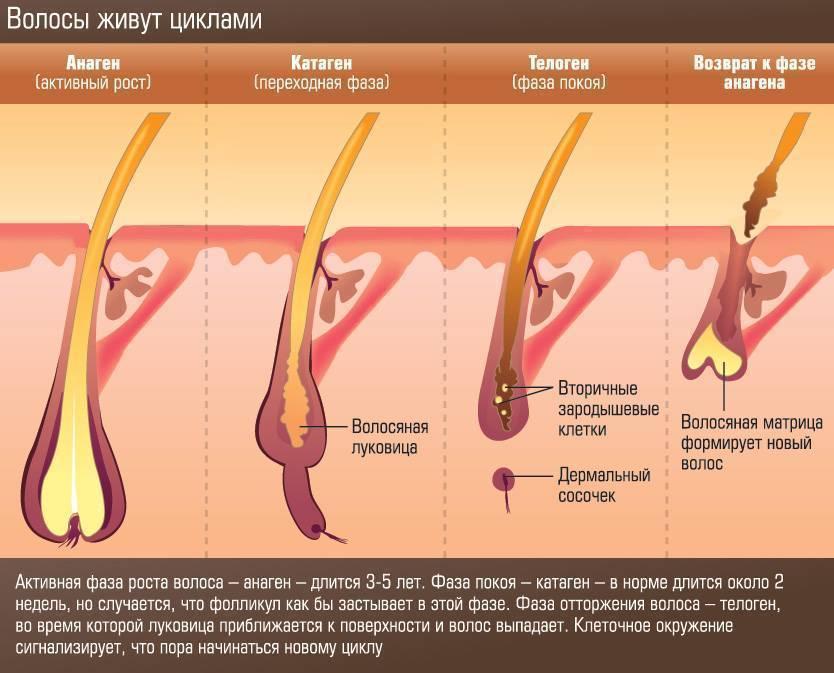 Как курение влияет на рост волос