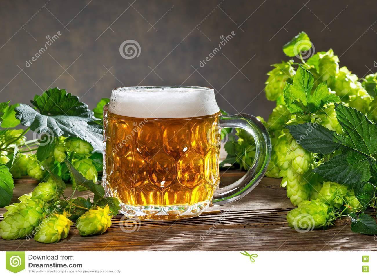 Выбираем ингредиенты для домашнего пива