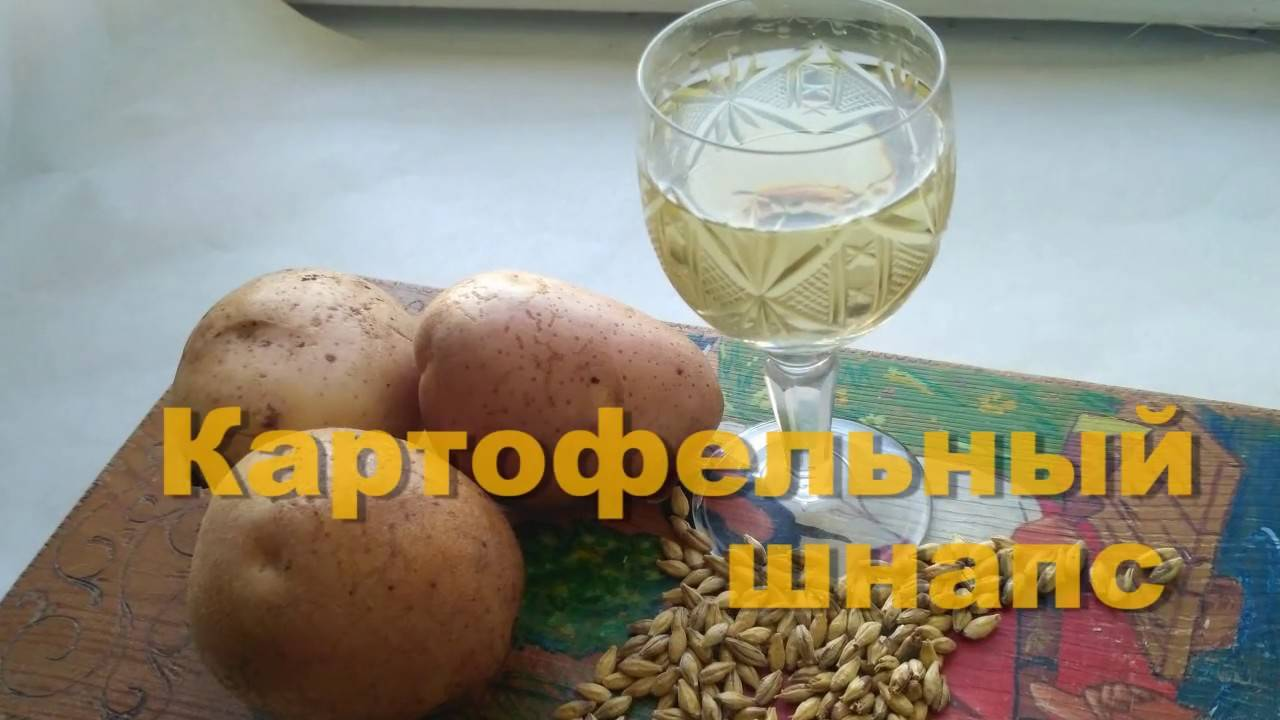 Брага на картошке