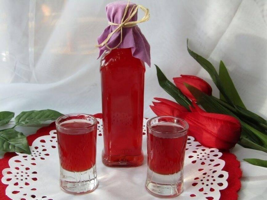 Настойка из брусники на водке: рецепт в домашних условиях