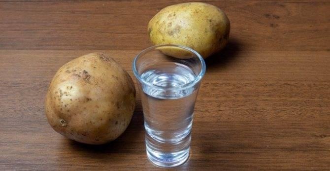 Как сделать самогон из картофеля в домашних условиях