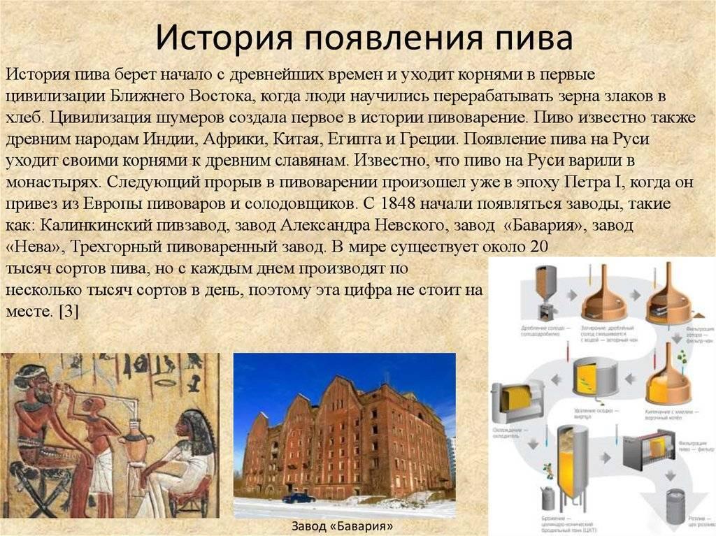 С чего все начиналось — история пива с древних времен и по наши дни