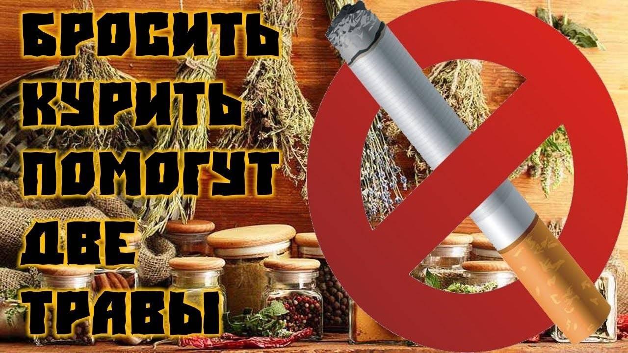 Как бросить курить: народными средствами, что помогает, травы от курения, овес, рецепт, чай, дедовский способ