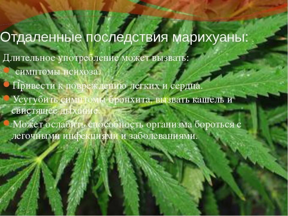 Зависимость от курения марихуаны