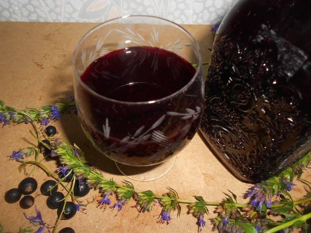 Рецепты наливок из красной рябины, потому что дождливая осень