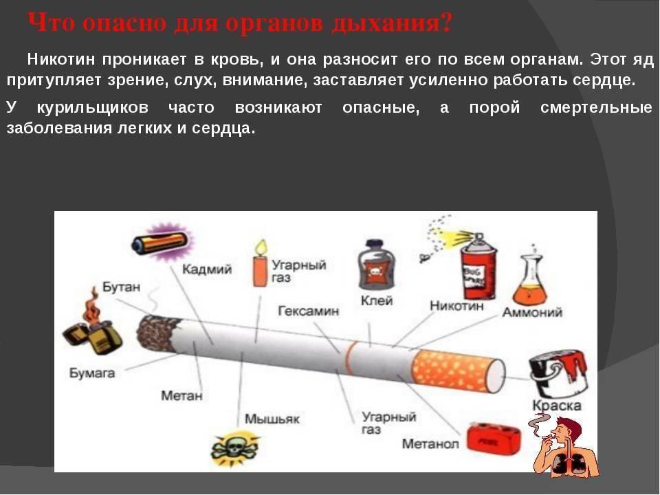 Вред наркотиков, алкоголя и курения