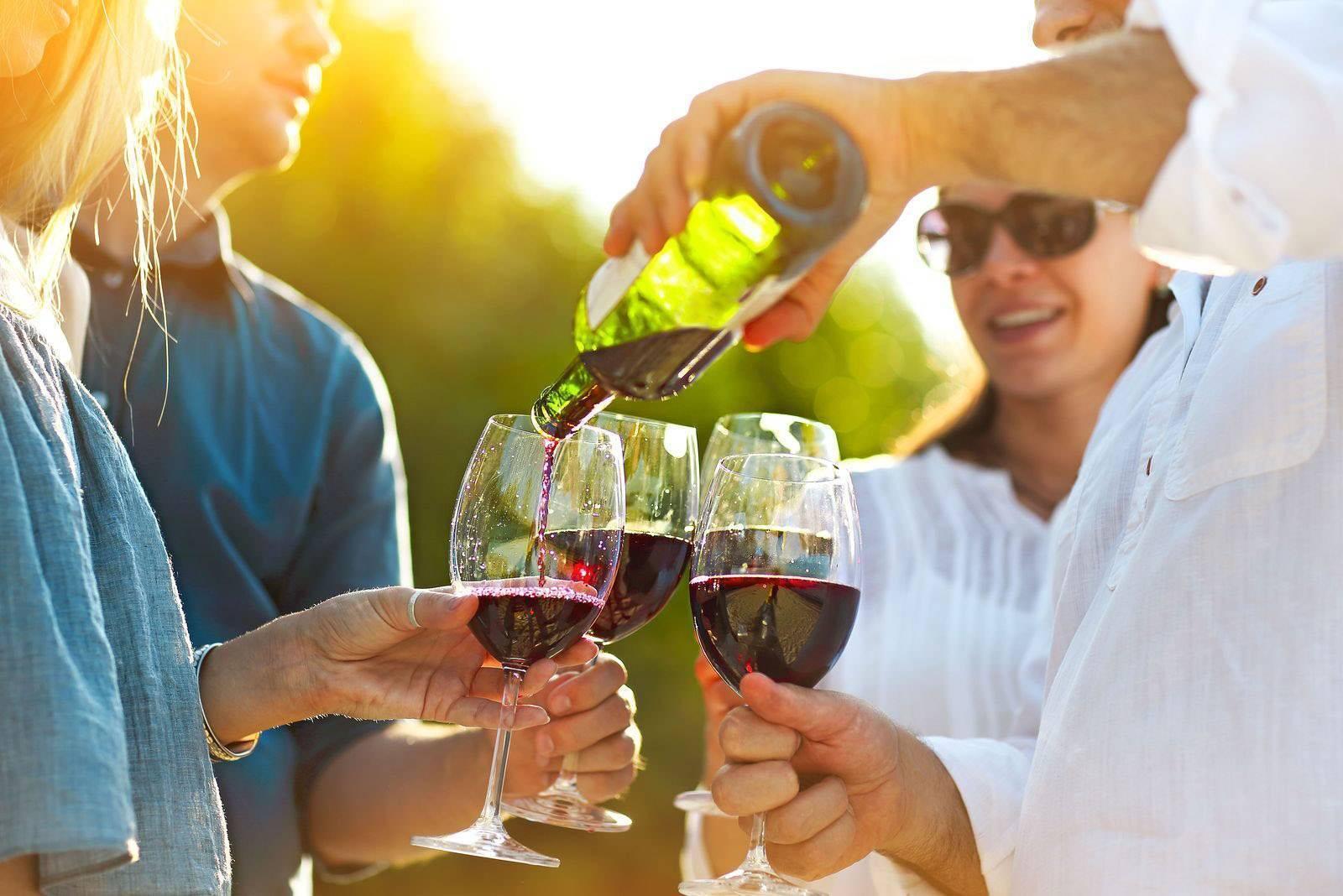 Органические, био и биодинамические вина – понятие и отличия