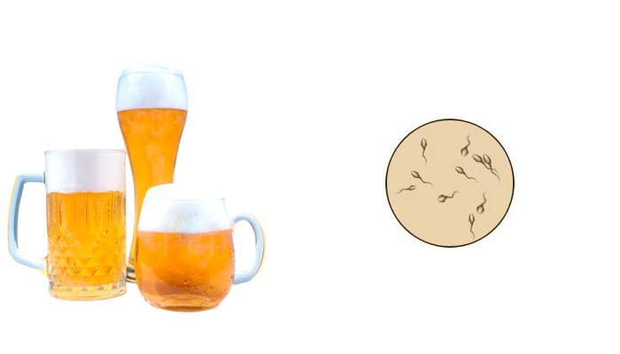 Влияние пива на спермограмму и зачатие детей у мужчин. зачатие и алкоголь - вещи несовместимые