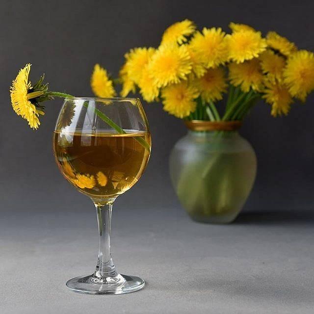 Вино из одуванчиков: рецепт приготовления в домашних условиях, как сделать напиток своими руками, польза и вред, вкус настойки