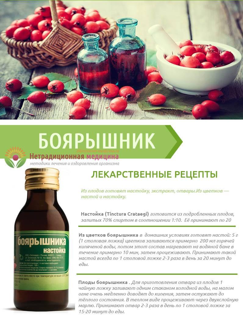 Смертельный «боярышник»: что еще пьют российские «колдыри. настойка боярышника не может использоваться как алкогольный напиток