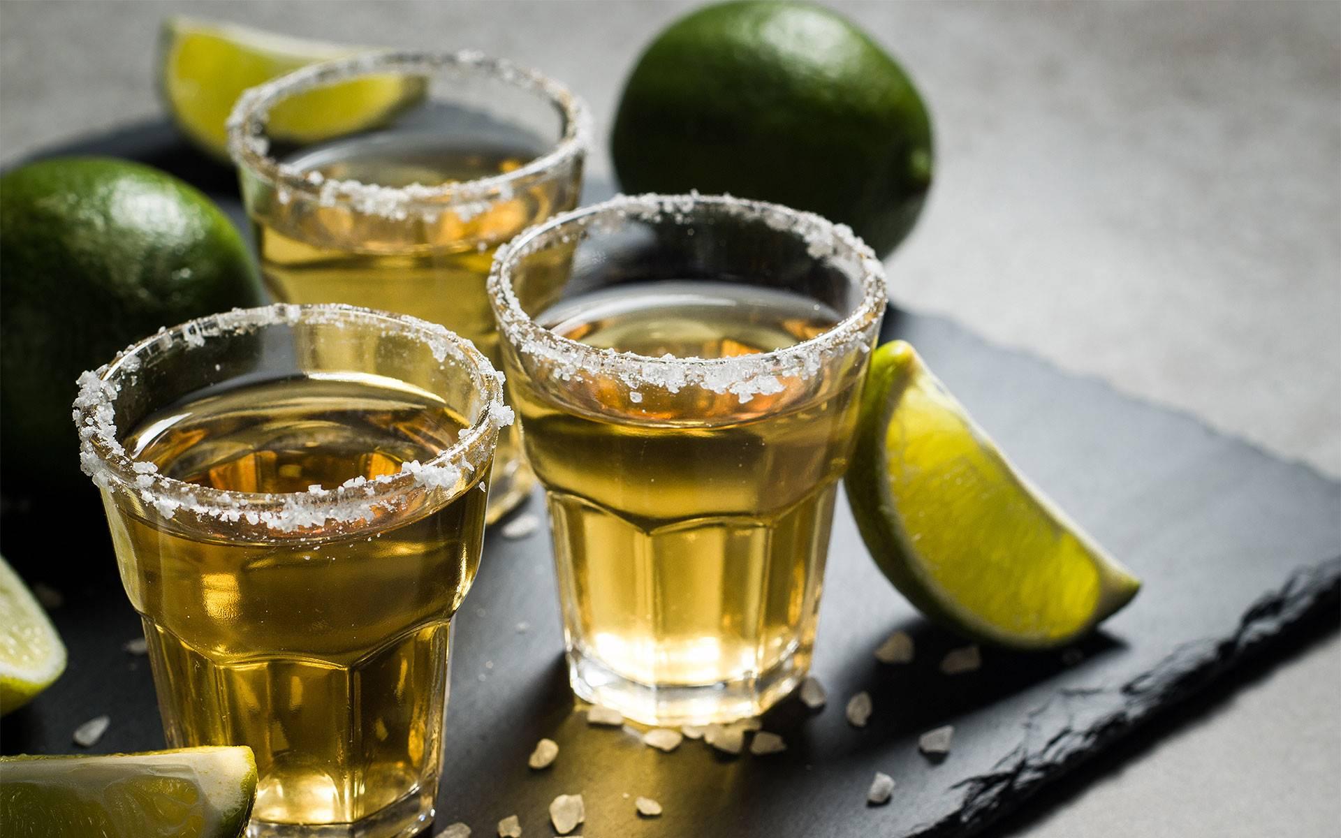Как пить текилу: основные сведения о напитке, чем закусывать, как разбавить в домашних условиях и как подавать