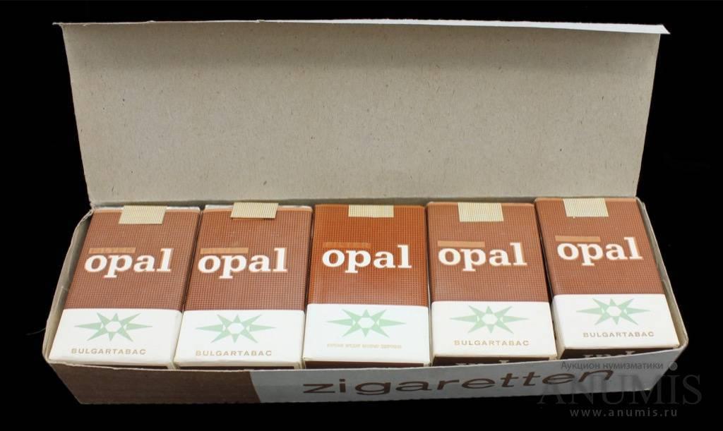 Ученые выяснили, сколько сигарет можно выкурить без вреда для здоровья. сколько пачек сигарет в блоке?