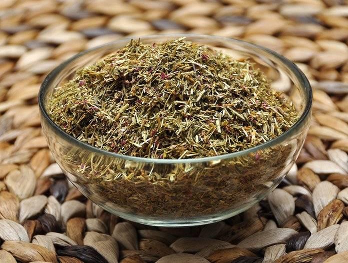 Лечебные свойства травы золототысячник