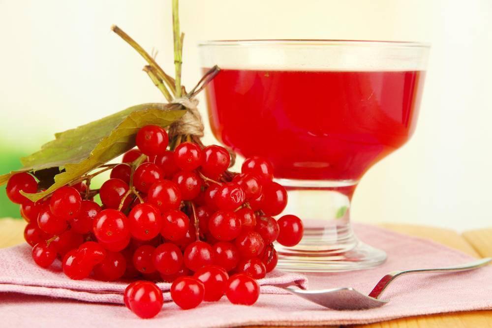 Рецепт приготовления вина из калины