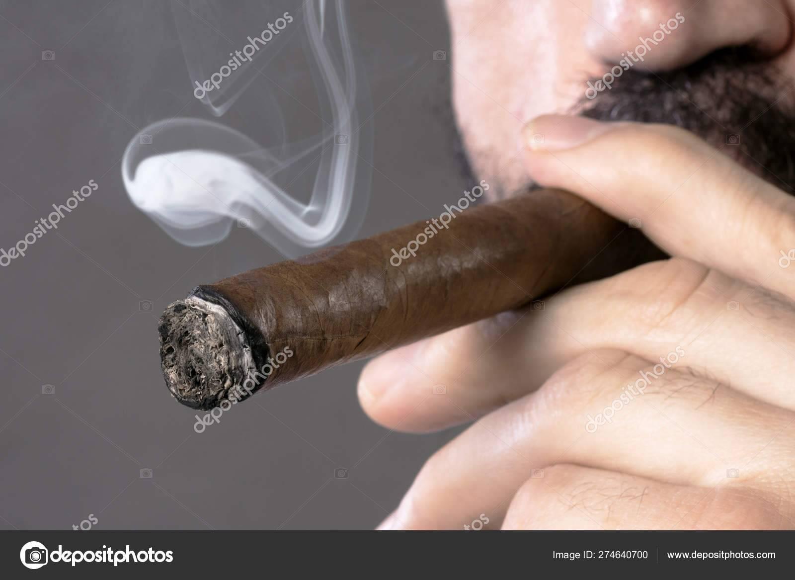 Сигары для начинающих. вопрос-ответ