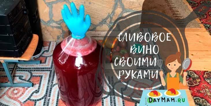 Как сделать вино из арбуза - пошаговый рецепт