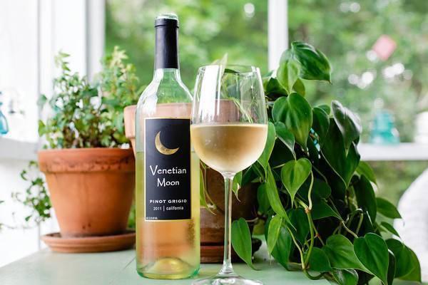 Сорт винограда пино гриджио: описание и сравнительная характеристика, выращивание