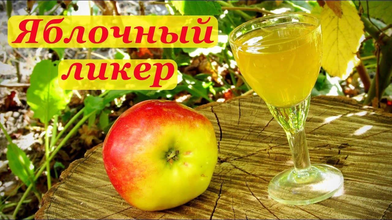Яблочная наливка: рецепты на водке, без водки, как сделать в домашних условиях