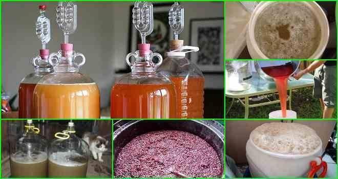 Сахарная брага из сахара и дрожжей: изготовление, закваска, подкормка