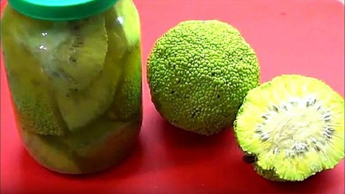 Использование адамова яблока для лечения суставов с пошаговыми рецептами и отзывами врачей