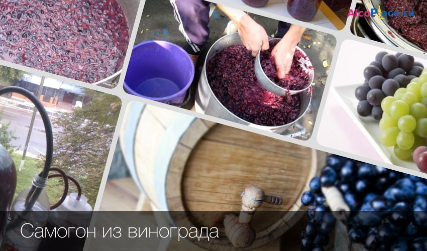 Рецепты самогона из вина домашнего происхождения