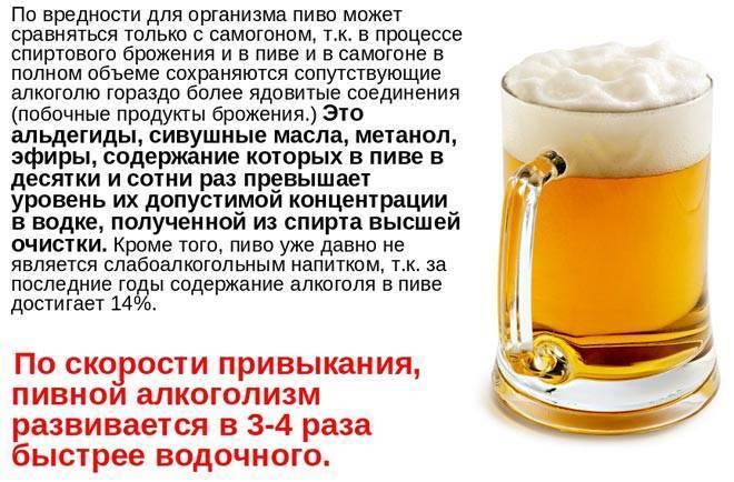 Вред пива на организм женщины | озож