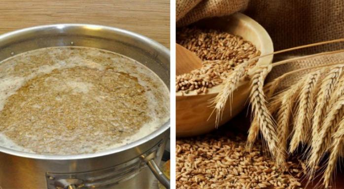 Как приготовить ячменный солод в домашних условиях