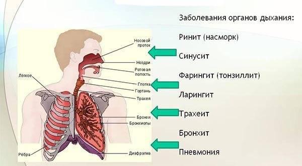 Может ли курение вызвать боль в груди?