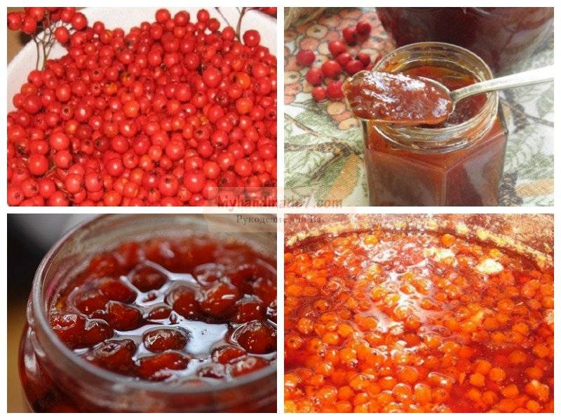 Приготовление вкусных заготовок из рябины красной на зиму: варенье, компот, сок и вино
