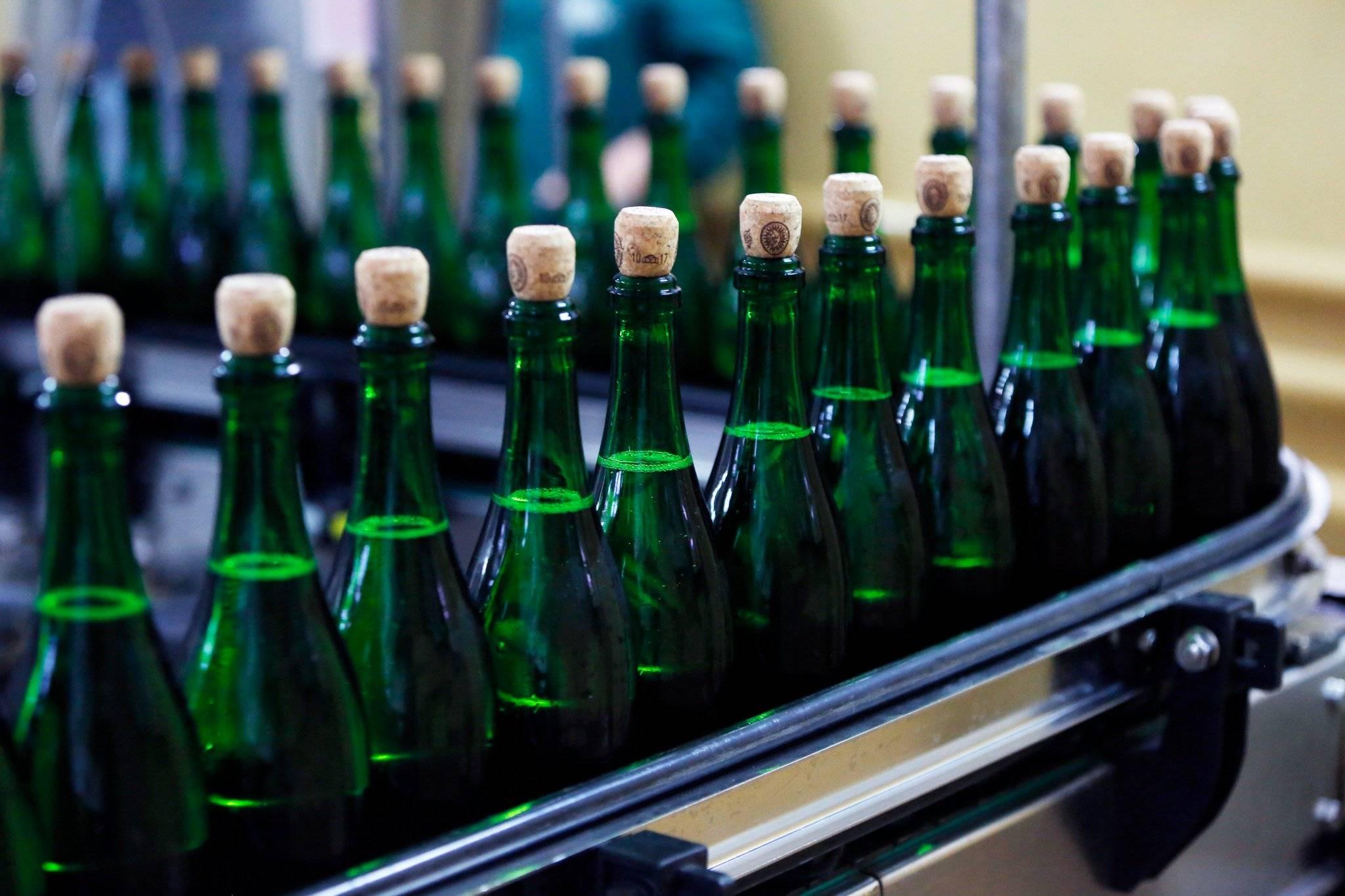 Виноград для шампанского - из какого винограда делают шампанское