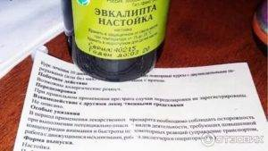 Эвкалипт – лечебные свойства настойки, эфирного масла, мази