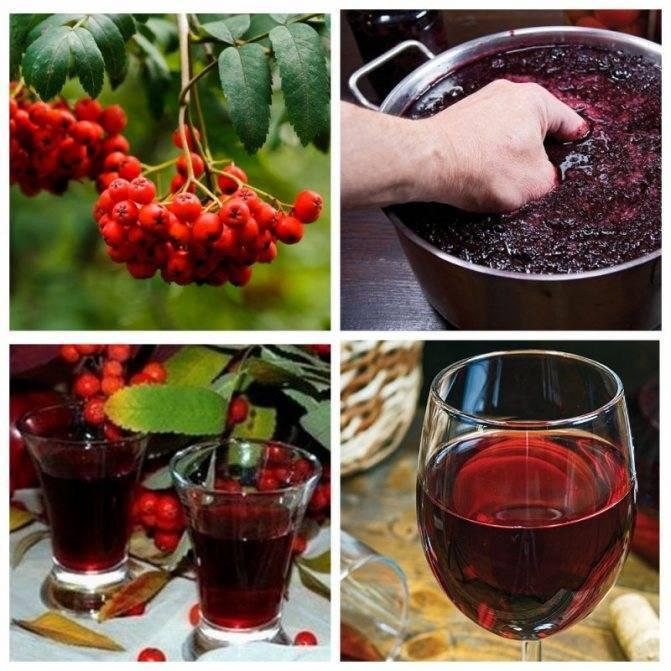 Алкоголь в кулинарии. спиртные напитки для приготовления блюд