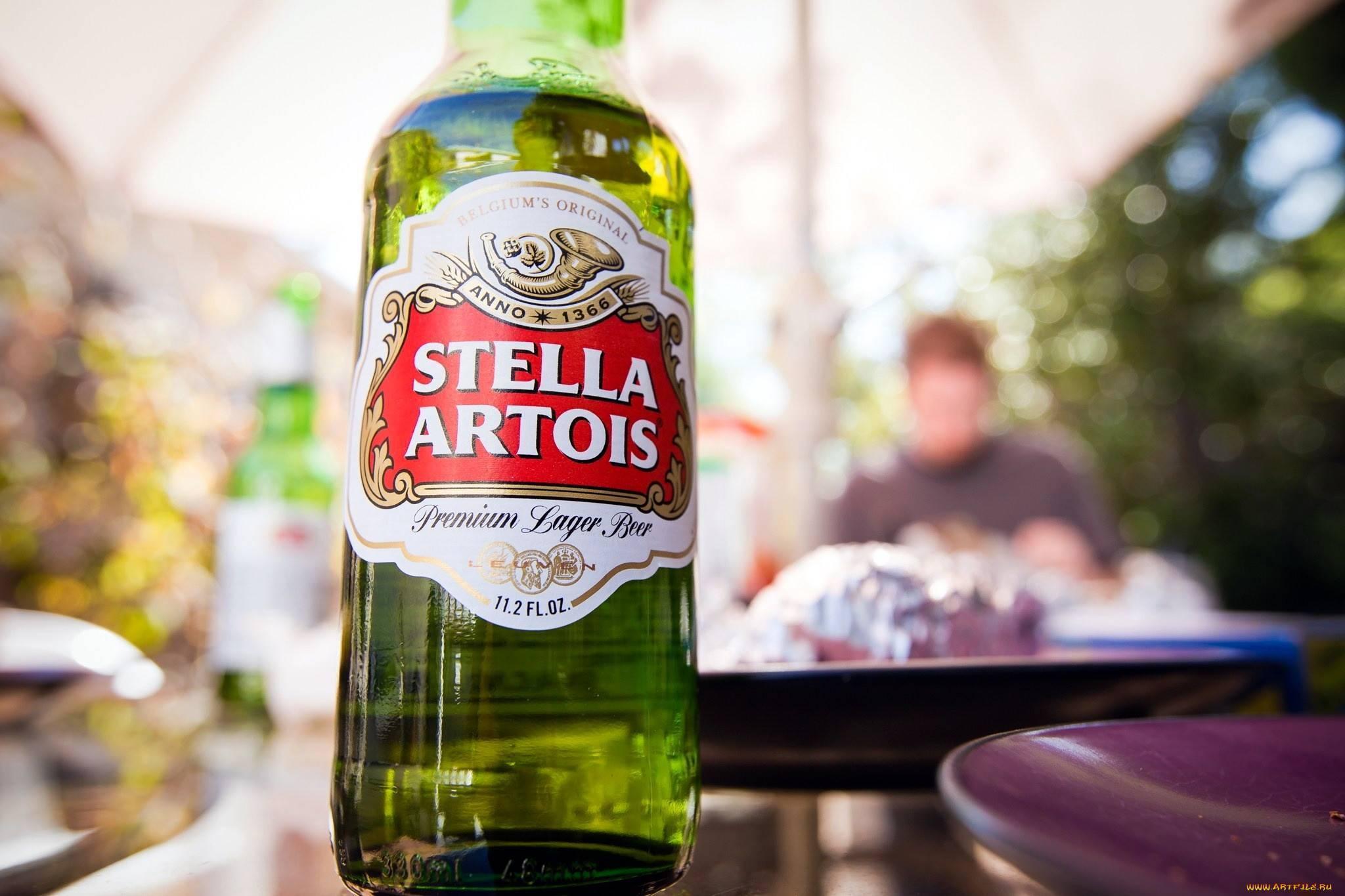 Стелла артуа: производитель, состав пива, разновидности напитка