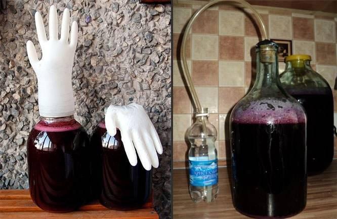 Домашнее вино из винограда - простые рецепты. технология приготовления виноградного вина в домашних условиях