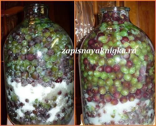 Настойка из винограда на водке - домашние рецепты из ягод, жмыха и на косточках