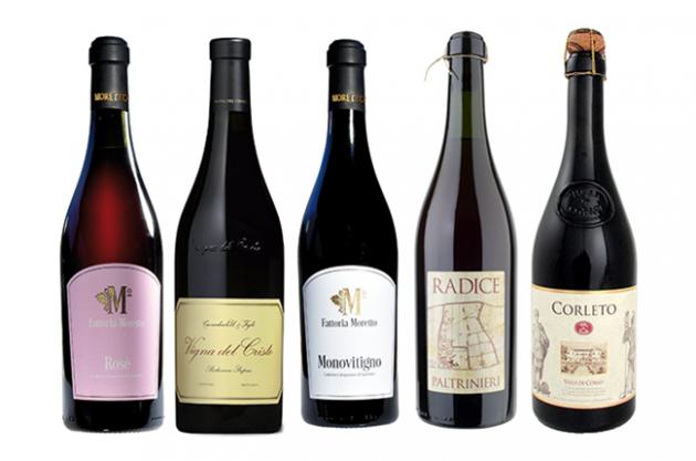 Обзор игристых красных и белых вин