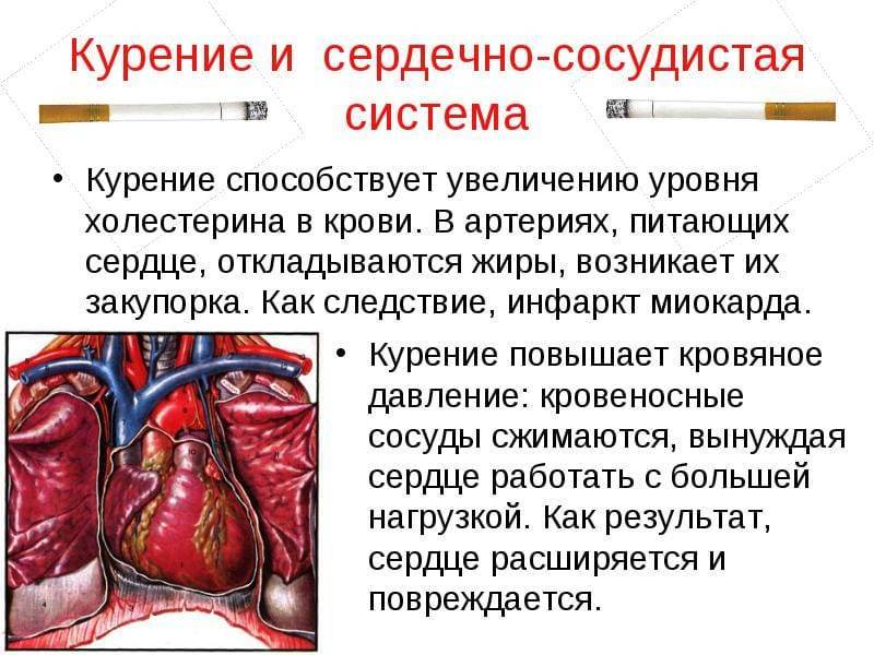 Аритмия от курения: влияние табака на сердце, последствия