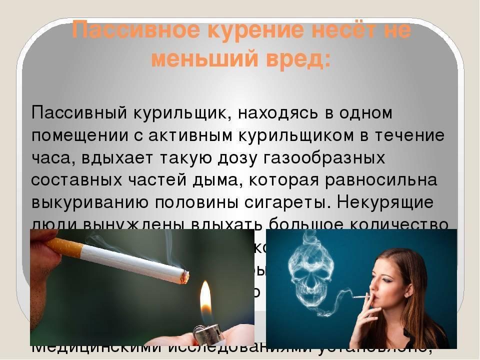 В какие мифы о курении верят современные курильщики?  | красота и здоровье | школажизни.ру