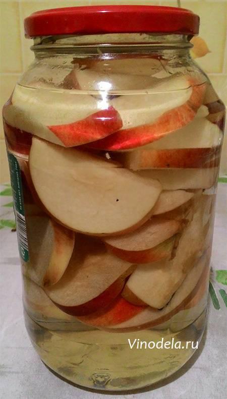 Пошаговый рецепт приготовления самогона из яблок в домашних условиях: советы по приготовлению браги