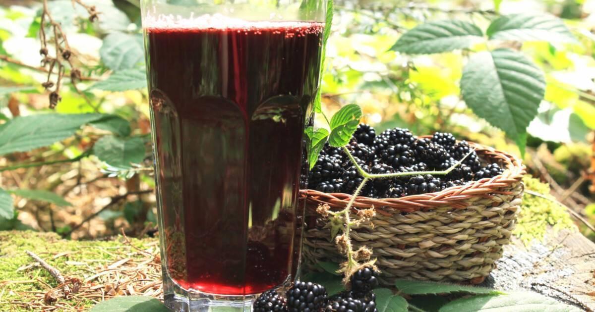 Напиток из крови титанов – рецепты ежевичных наливок
