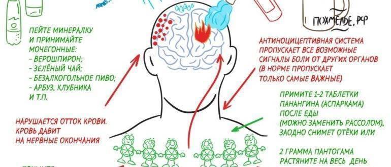 Болит голова после пива: 2 причины неприятных ощущений