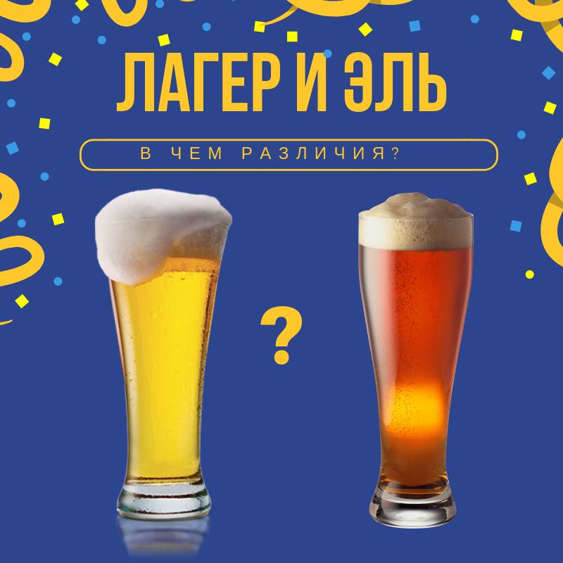 Чем отличается эль от пива? ale vs lager | pivo.net.ua