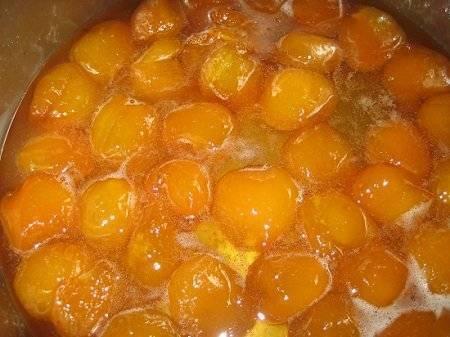 Готовим самогон из абрикосов в домашних условиях!