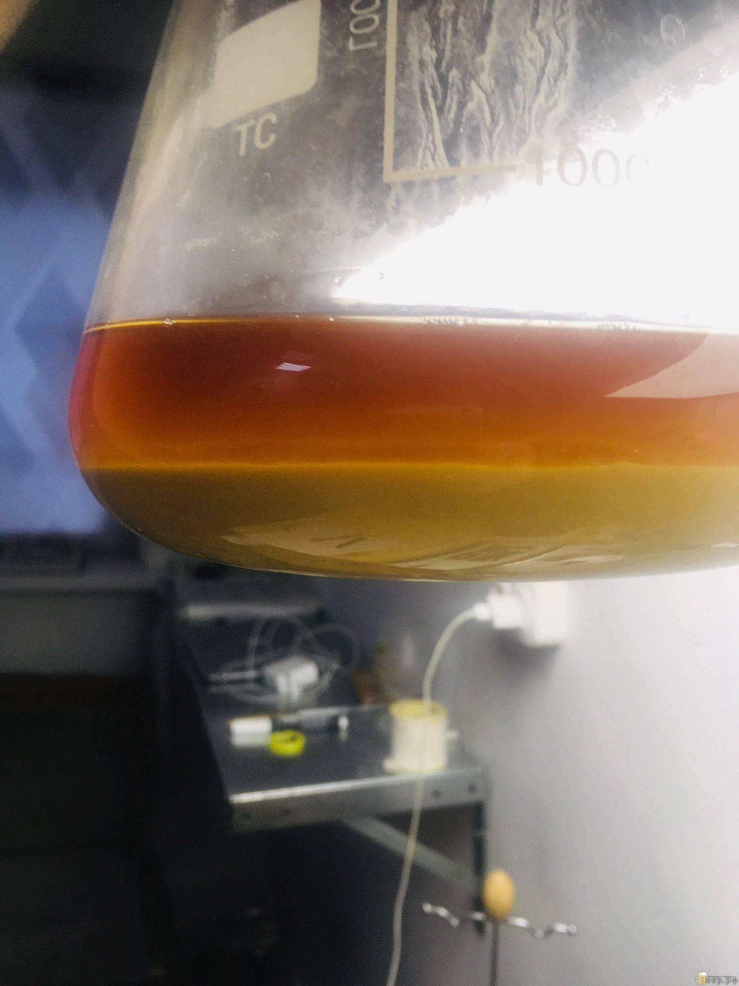 Первичное брожение пива или ферментация